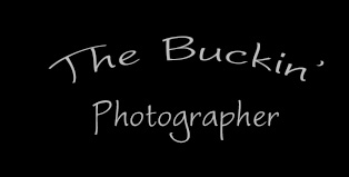 The Buckin Photographer